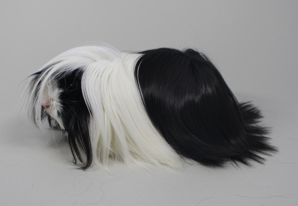 """Peruaner """"Black Jack"""" in Schwarz-Weiß von Bianca Erades"""