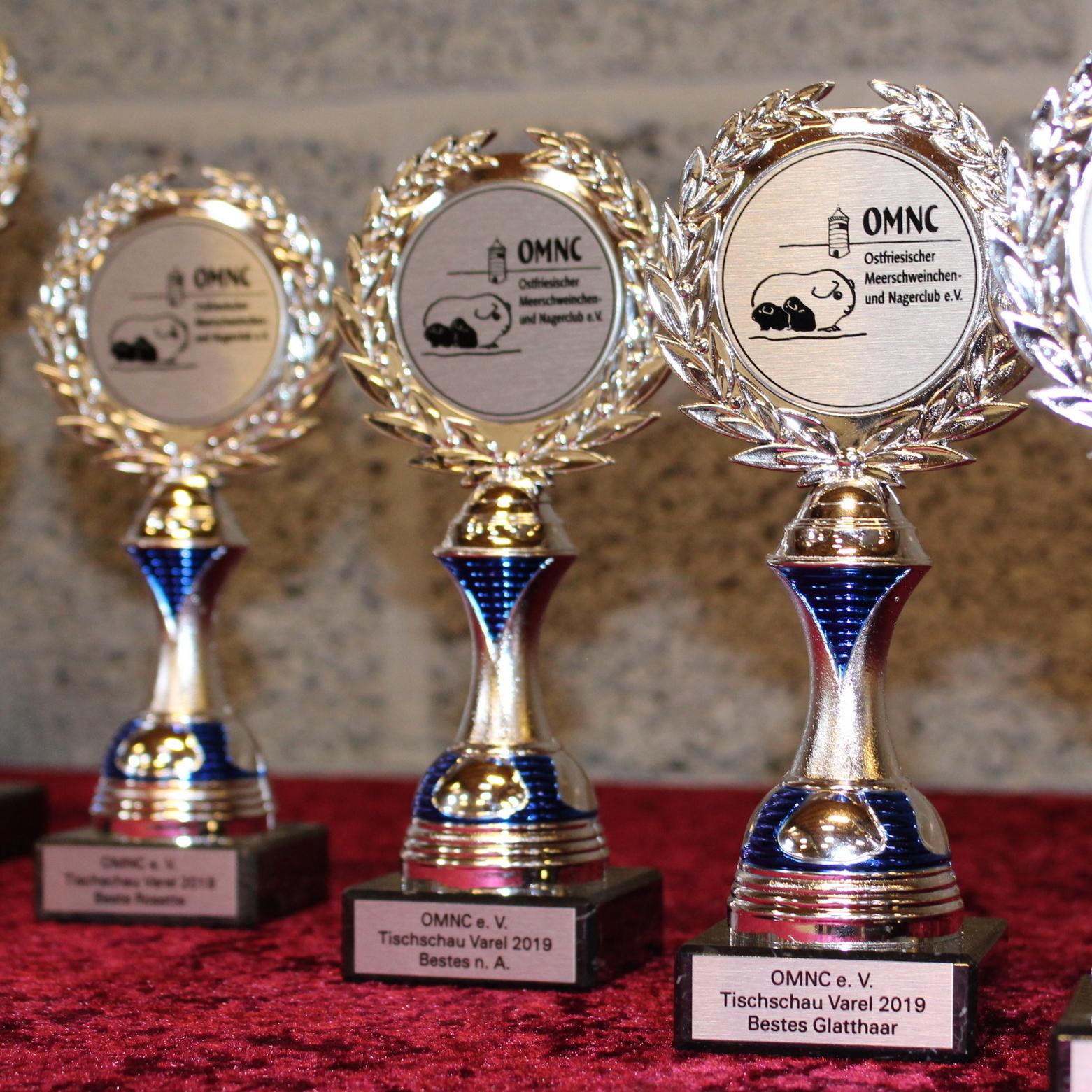 Tischschau Februar 2019 in VarelUnsere Pokale